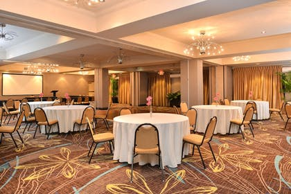 Meeting Facility | Holiday Inn Express Hotel & Suites Dallas South - Desoto