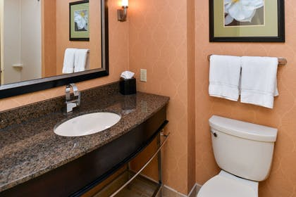 In-Room Amenity | Holiday Inn Express Hotel & Suites Dallas South - Desoto
