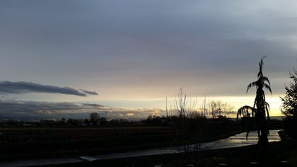 View from Hotel | Comfort Inn And Suites Walla Walla