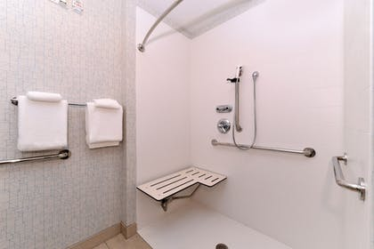 Bathroom Shower | Holiday Inn Express & Suites Parkersburg-Mineral Wells
