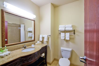 In-Room Amenity   Holiday Inn Express Hotel & Suites Terrell