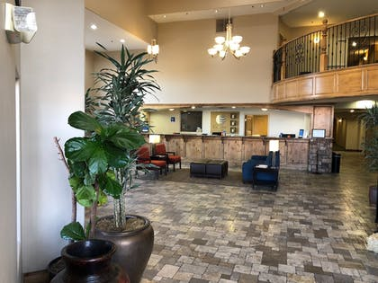 Lobby Sitting Area | Comfort Inn at Convention Center