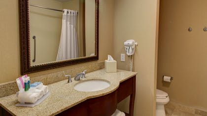 Bathroom | Holiday Inn Express & Suites Sioux City - Southern Hills