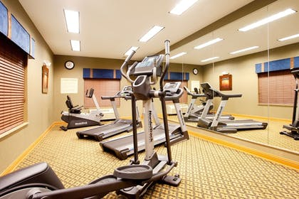 Fitness Facility   Holiday Inn Express Hotel & Suites Chicago South Lansing