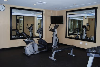 Fitness Facility | Holiday Inn Express Hotel & Suites Auburn Hills
