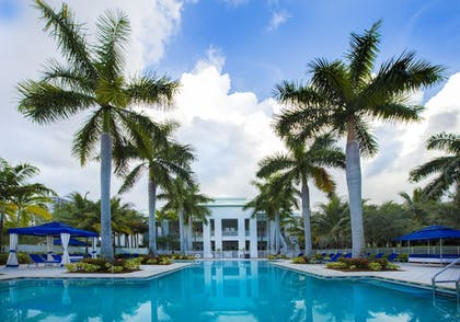 Pool | Provident Doral at The Blue Miami