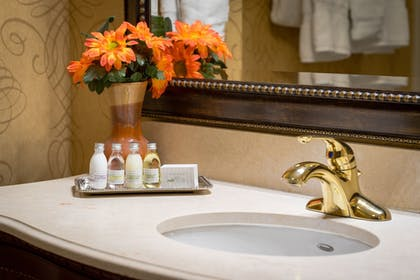 Bathroom Sink | The Wildwood Hotel