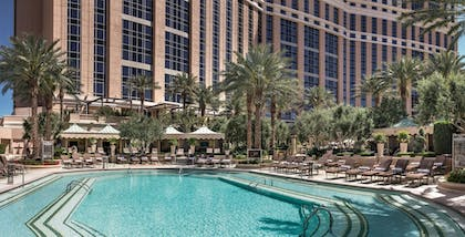 Pool | The Palazzo Resort Hotel & Casino