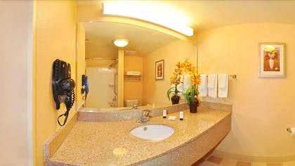 Bathroom Sink | Fairfield Inn & Suites Marianna