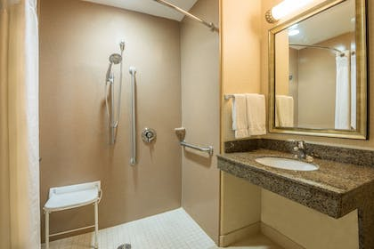 Bathroom | Holiday Inn Express & Suites Phoenix - Glendale Sports Dist