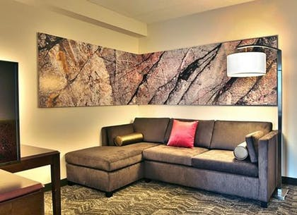 Living Area | Springhill Suites by Marriott Louisville Airport