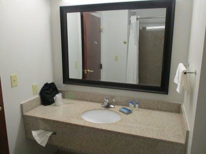 Bathroom | Best Western Plus Philadelphia-Choctaw Hotel and Suites