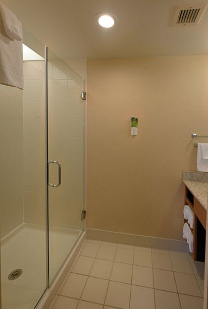 Bathroom Shower | SpringHill Suites by Marriott Albany-Colonie