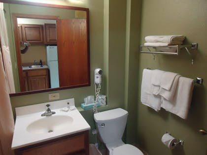 Bathroom |  | Town House Extended Stay Hotel Downtown