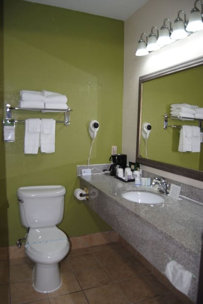 Bathroom | Sleep Inn & Suites Montgomery East I-85