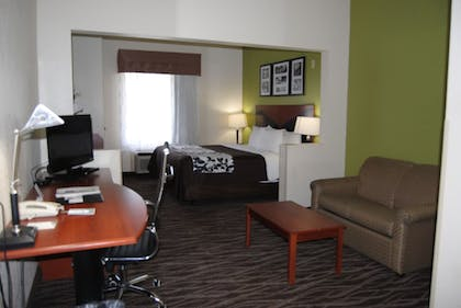 Guestroom | Sleep Inn & Suites Montgomery East I-85