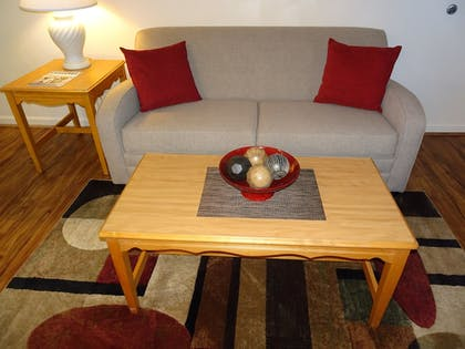 Living Room | Affordable Corporate Suites - Lynchburg