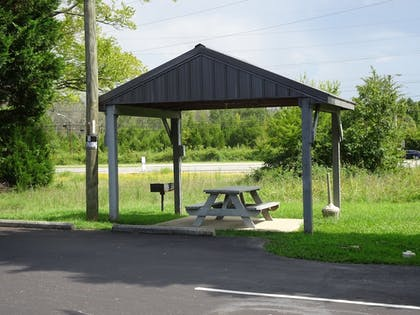 BBQ/Picnic Area | Affordable Corporate Suites