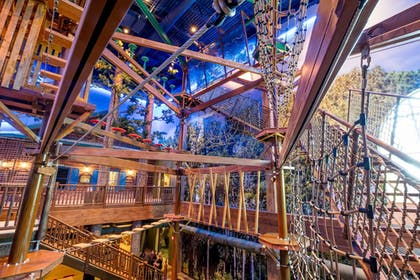 Ropes Course (Team Building) | Great Wolf Lodge Illinois