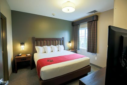 Guestroom View | Great Wolf Lodge Illinois