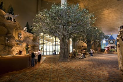 Lobby | Great Wolf Lodge Grapevine