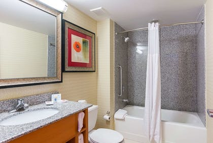 Bathroom | Comfort Suites At Virginia Center Commons