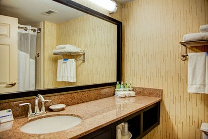 Bathroom | Holiday Inn Express Suites South - Tyler