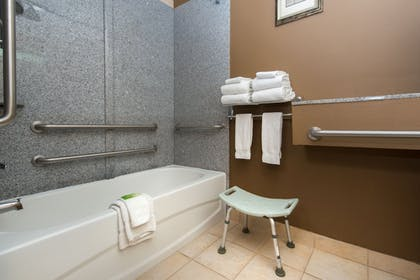 In-Room Amenity | Holiday Inn Express Hotel & Suites Lavonia