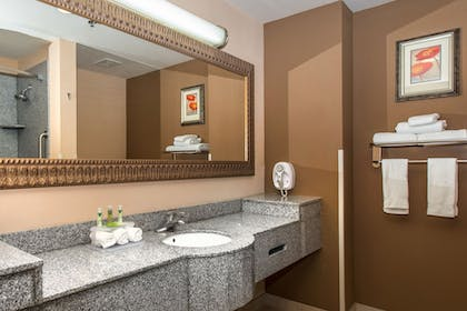Bathroom Sink | Holiday Inn Express Hotel & Suites Lavonia