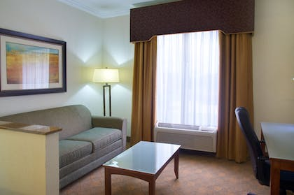 Living Area   Holiday Inn Express & Suites Lufkin South