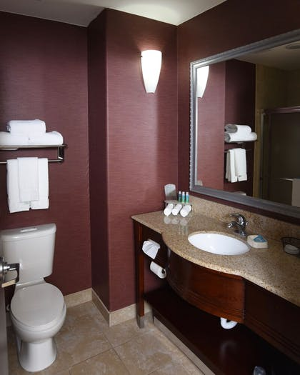 In-Room Amenity | Holiday Inn Express Hotel & Suites Seguin