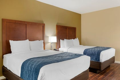 Room | Comfort Inn & Suites near Ontario Airport