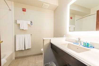 Bathroom | Holiday Inn Express Hotel & Suites in North East (Erie)