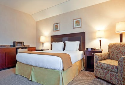 Guestroom | Holiday Inn Express Hotel & Suites in North East (Erie)