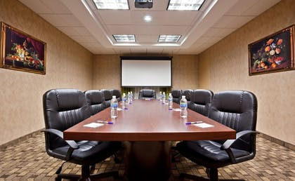 Meeting Facility | Holiday Inn Express Hotel & Suites in North East (Erie)