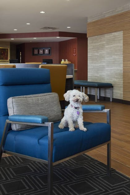Lobby Sitting Area | TownePlace Suites by Marriott Austin Round Rock