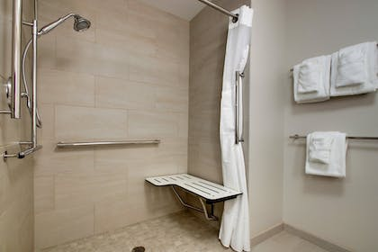 Bathroom | Holiday Inn Express and Suites-Elizabethtown North