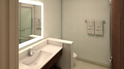 Bathroom | Holiday Inn Express and Suites North Brunswick