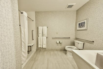 Bathroom | Holiday Inn Express & Suites Farmers Branch