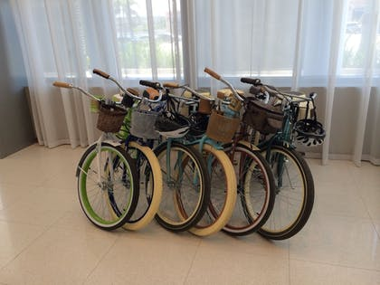 Bicycling | Suite Life Miami at The Monte Carlo