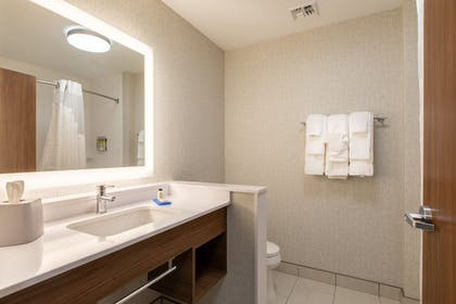 Guestroom | Holiday Inn Express & Suites Greenville S- Piedmont