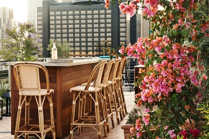 Rooftop Pool | The NoMad Hotel Los Angeles