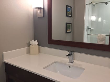 Bathroom Sink | Comfort Suites North Charleston - Ashley Phosphate