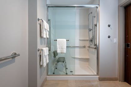 Bathroom Shower | Holiday Inn Express And Suites Punta Gorda