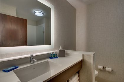 Bathroom | Holiday Inn Express & Suites Mt Sterling North