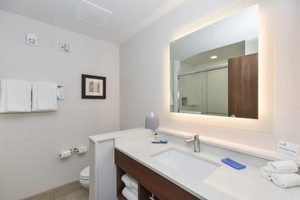 Bathroom | Holiday Inn Express & Suites Charlotte - Ballantyne