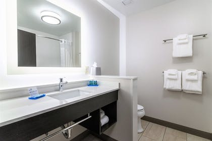 In-Room Amenity   Holiday Inn Express & Suites Allen Park
