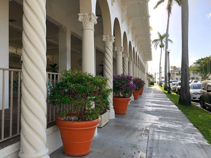 Exterior detail | Designer Decorated Palm Beach Hotel NEW