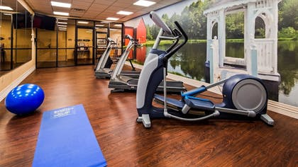 Fitness Facility   Best Western Plus Dutch Haus Inn and Suites