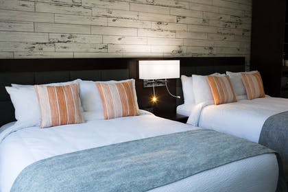 Guestroom | The Fin Boutique Hotel